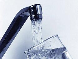 Какой водой поливать